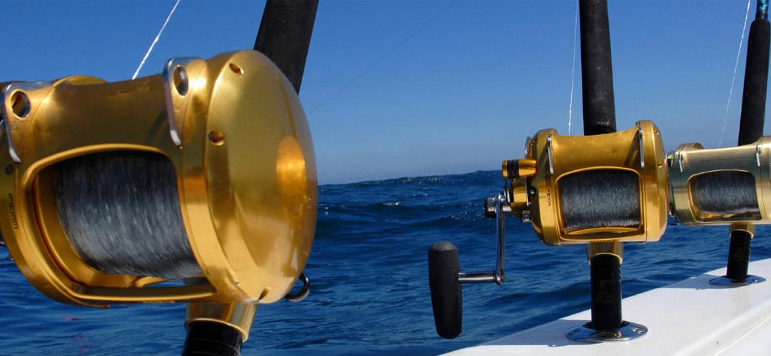Myrtle beach fishing myrtle beach sportfishing myrtle for Fishing charters carolina beach nc