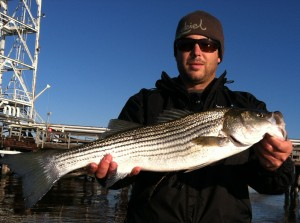 Wilmington Striped Bass Fishing Charters