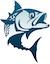 NC Fishing Charters