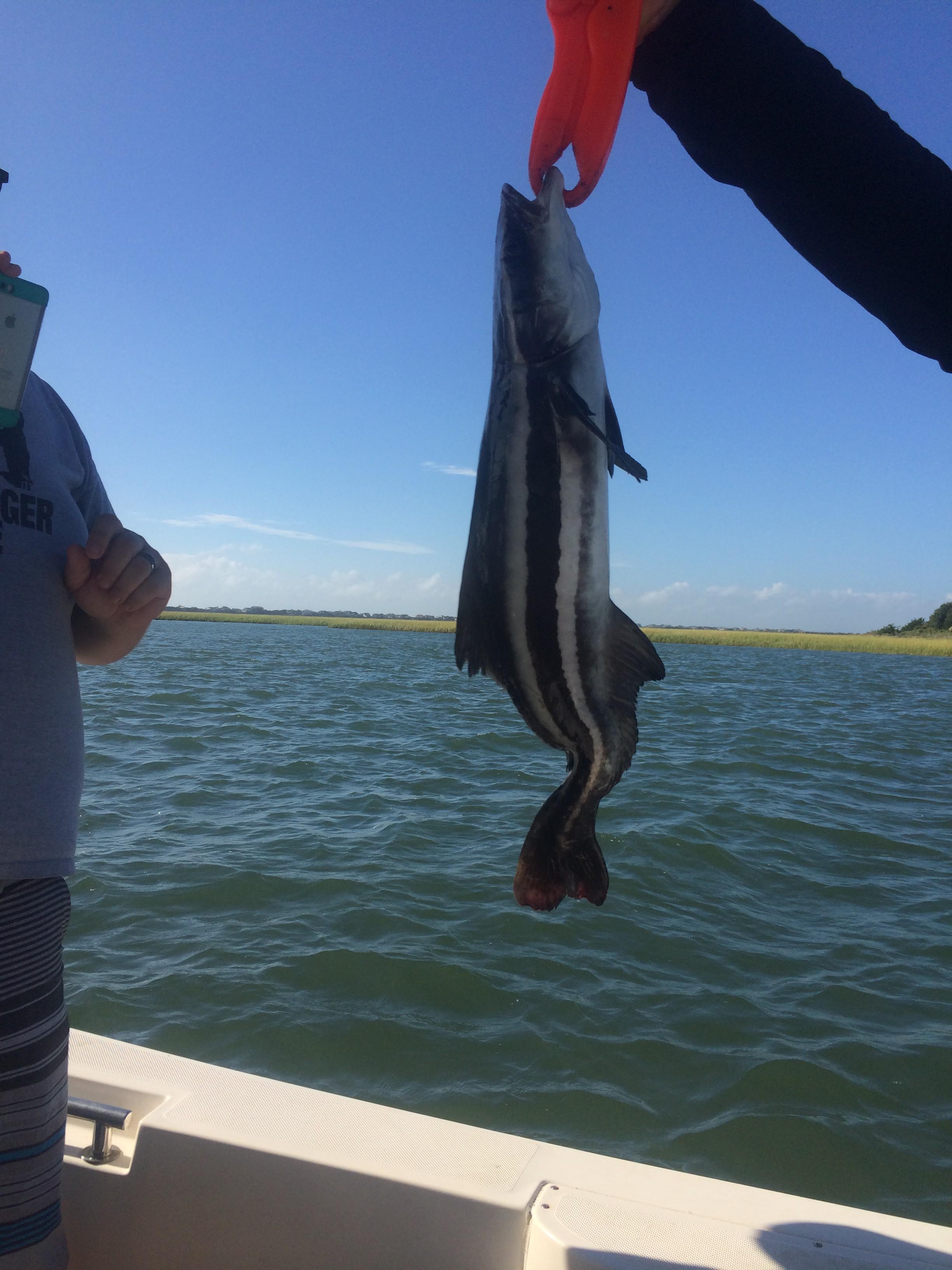 Topsail Beach Fishing Charters