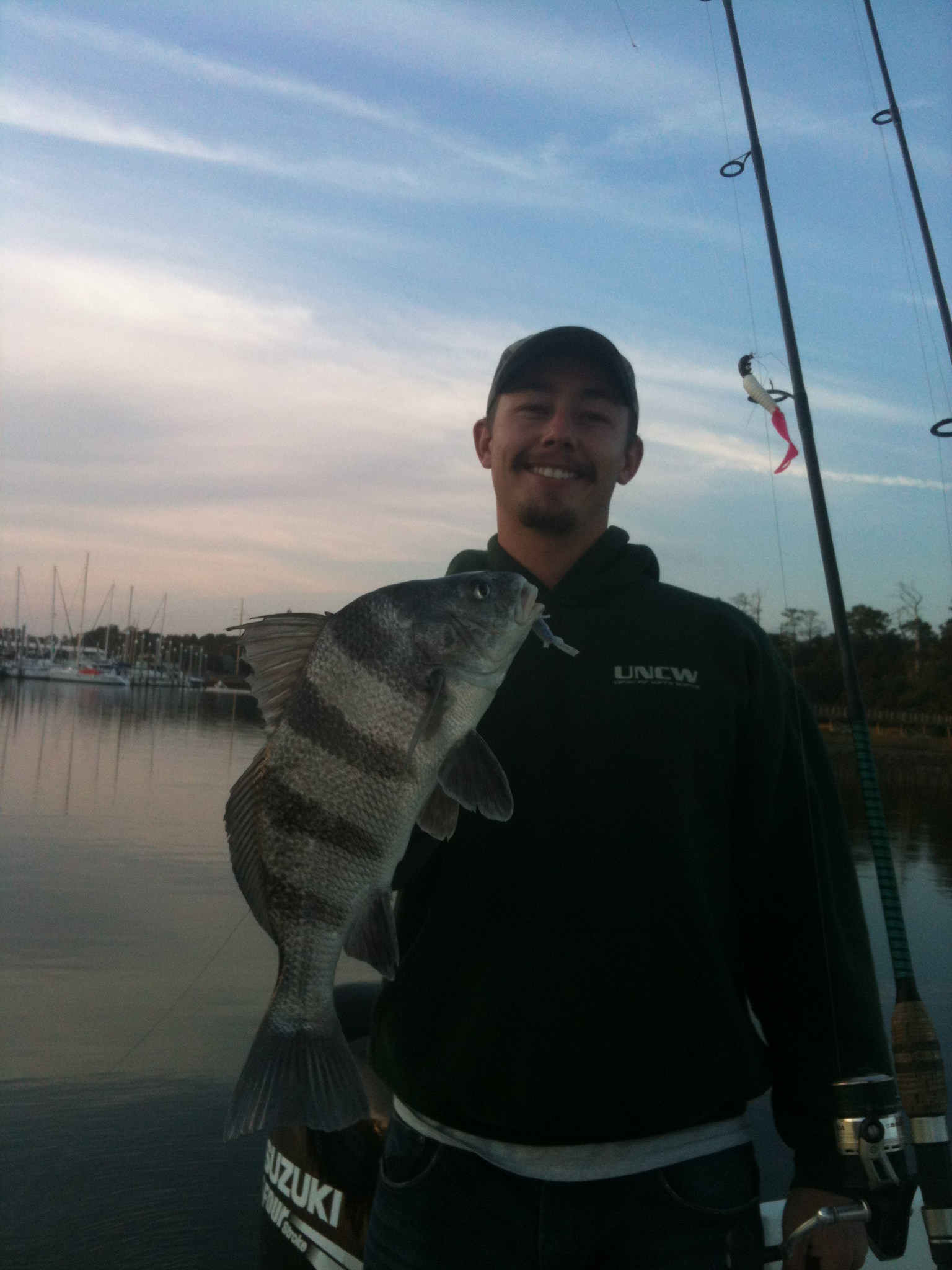 Inshore Winter Black Drum caught on Fresh Shrimp