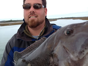 Wilmington Fishing Charters NC, Tautog fish