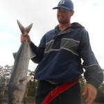 Inshore Fishing Charters in Wrightsville Beach Bluefish