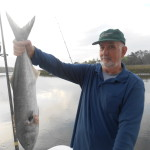 Terry with a Nice Inshore Chopper Bluefish