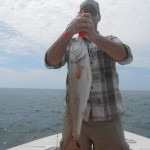 Topsail Island Red Drum Fishing Charters
