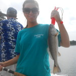 Inshore Red Drum Fishing Charters