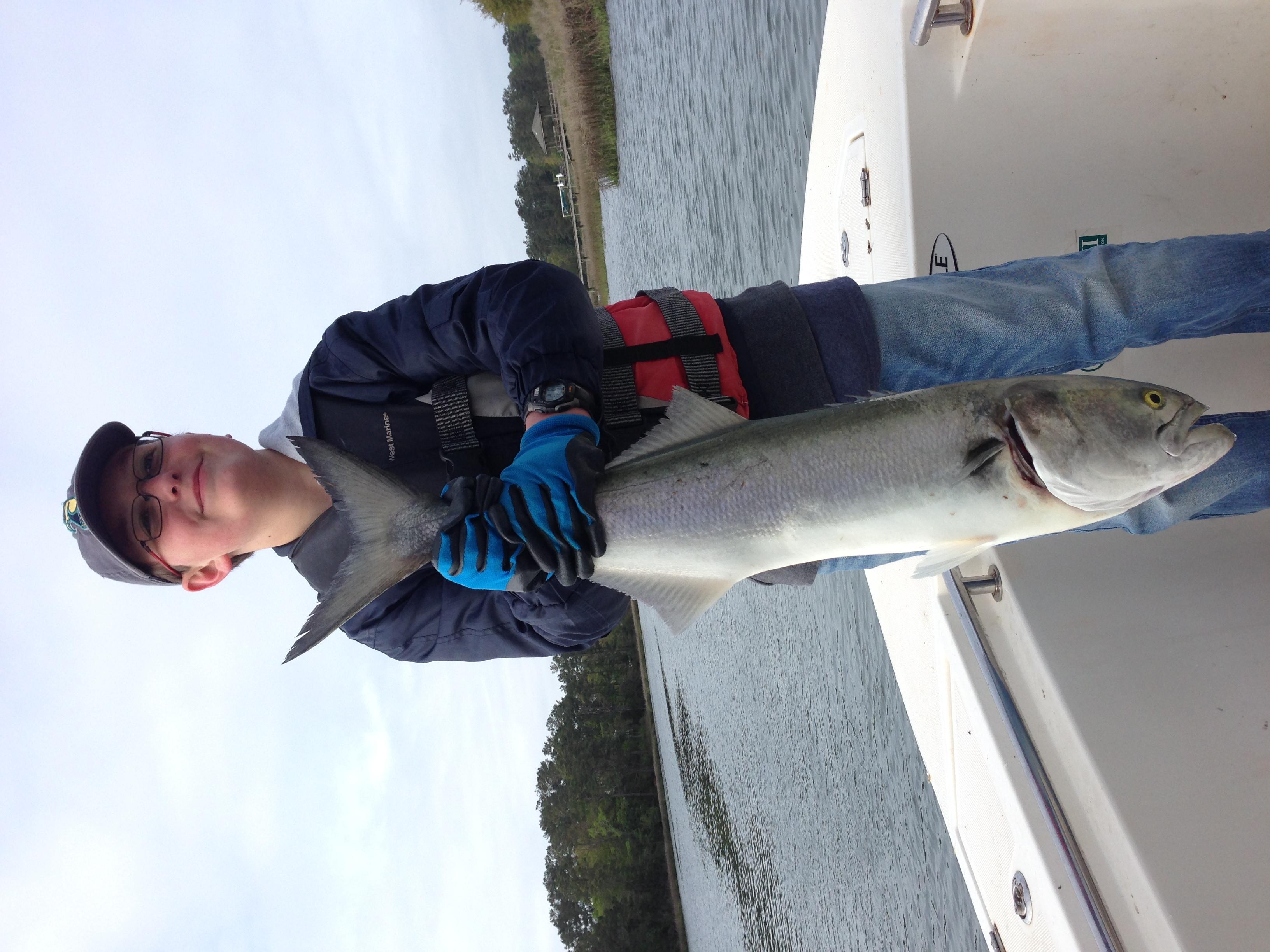 Kids fishing big topsail bluefish profishnc charters for Nc fishing charters