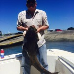 Cobia Fishing Charters Wilmington Fishing Charters