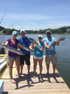 King Mackerel Fishing Charters